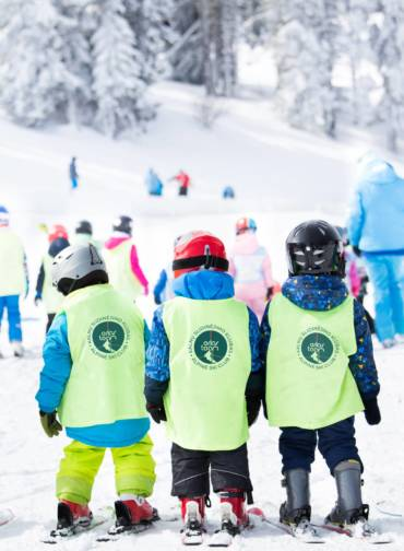 Kviečiame vaikučius dalyvauti kalnų slidinėjimo stovykloje Druskininkuose, Sniego arenoje iki kovo 15 d!